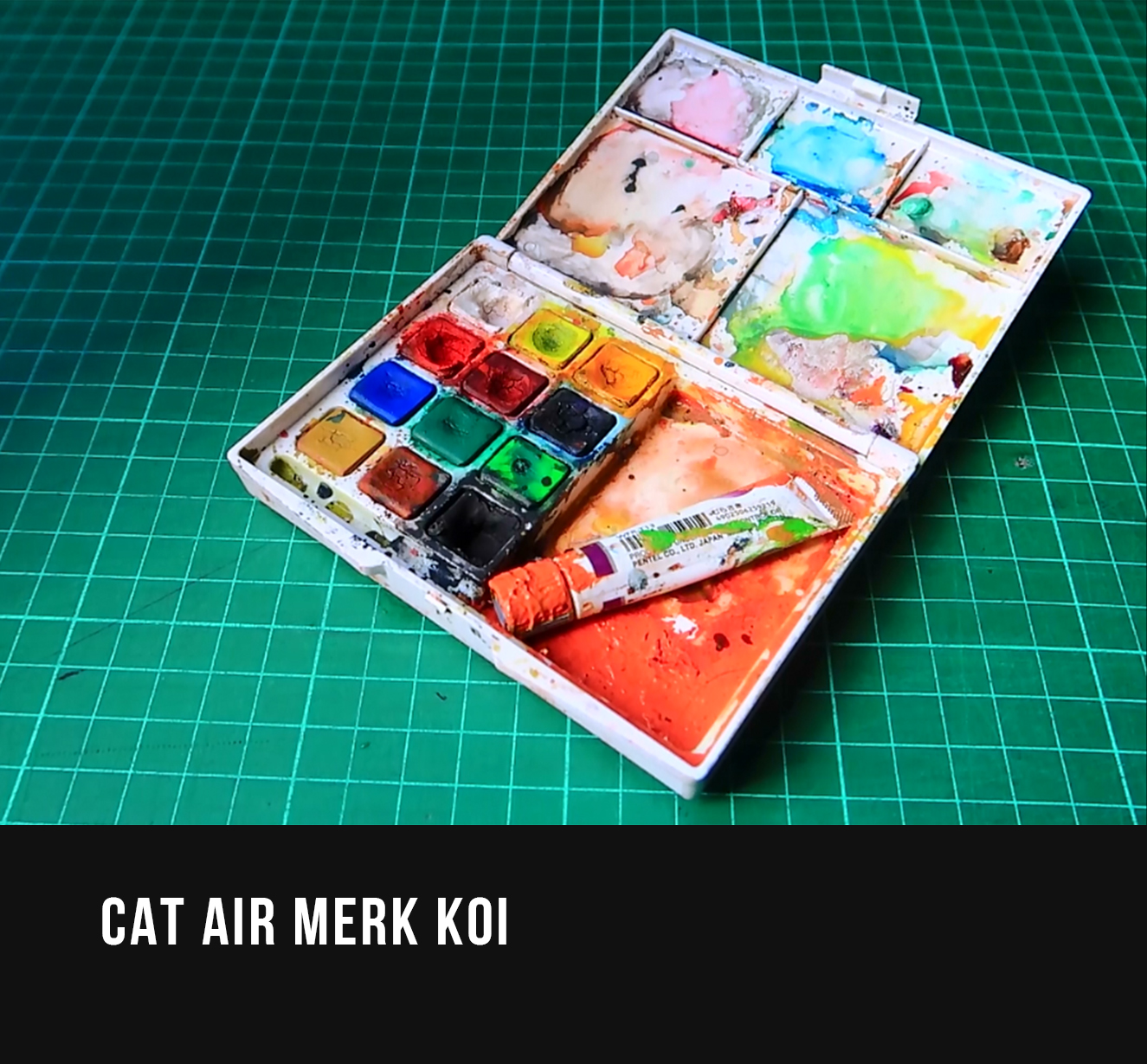 CAT AIR MERK KOI